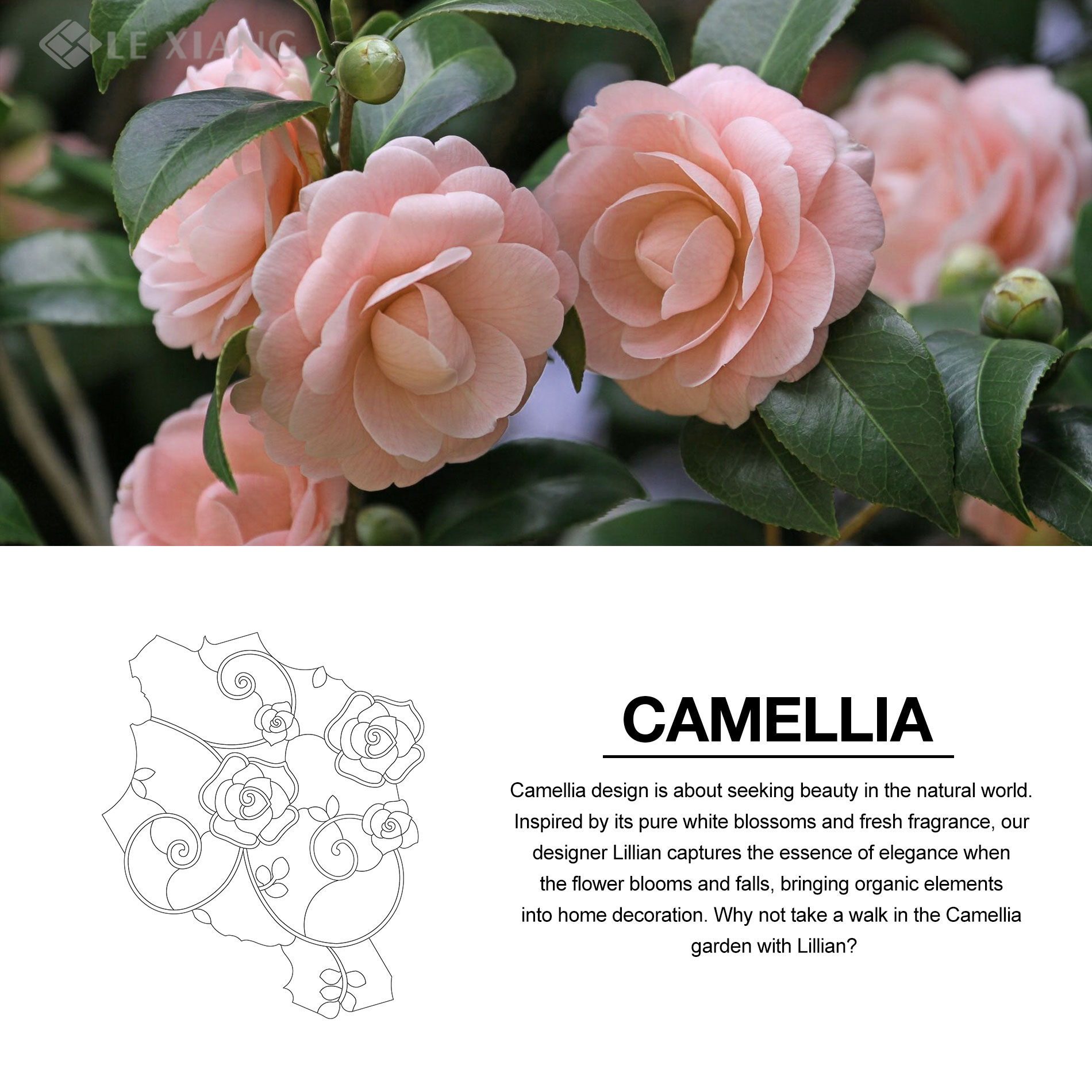 Camellia-WaterJet-Cut-Mosaic-Stone-Tile-For-Bothroom-Wall-8