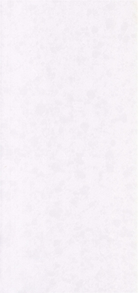 LXSQ6421 Organic White